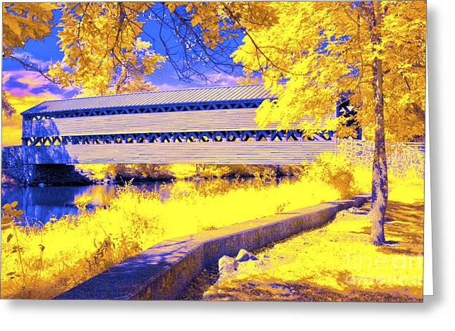 Ir Greeting Cards - Surrounded by Yellow Greeting Card by Paul W Faust -  Impressions of Light