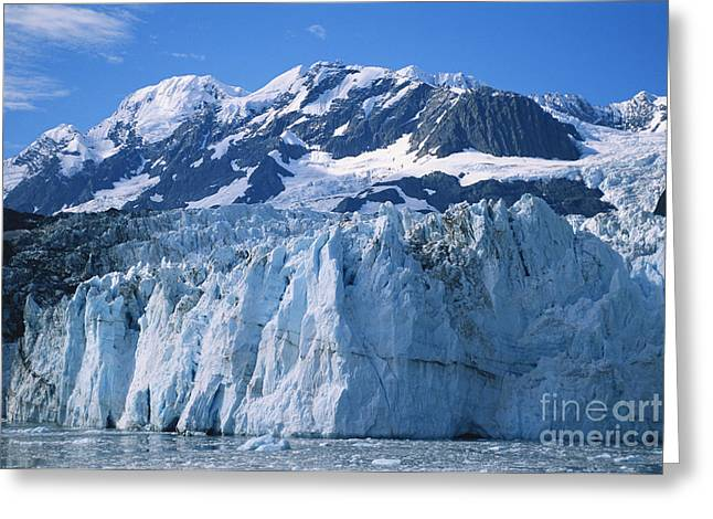 Surprise Greeting Cards - Surprise Glacier Greeting Card by Mark Newman
