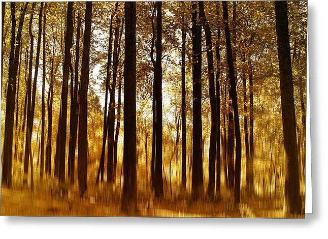 Surreal Autumn Greeting Card by Kim Hojnacki