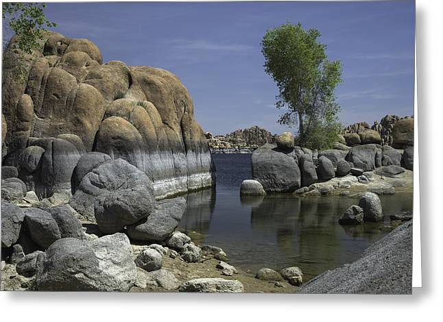 Watson Lake Greeting Cards - Surreal Beauty Greeting Card by Lorraine Harrington