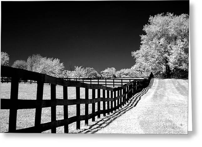 Nature Surreal Fantasy Print Greeting Cards - Surreal Black White Infrared Fence Landscape Greeting Card by Kathy Fornal