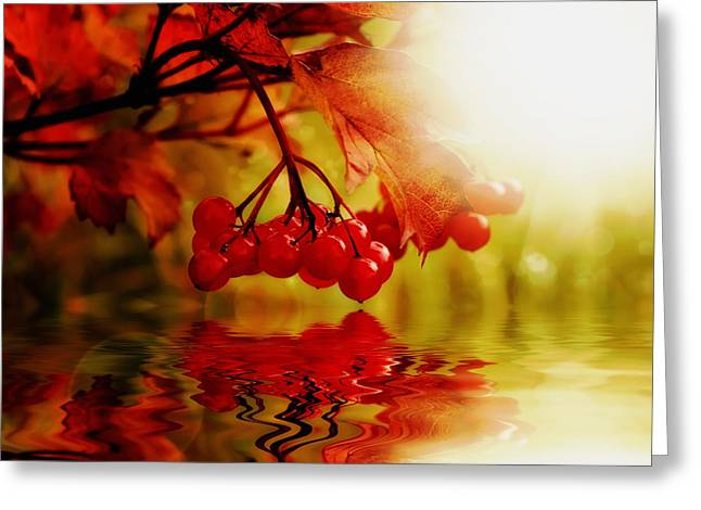 Fruit Tree Art Greeting Cards - Surreal Cherries Greeting Card by Mountain Dreams