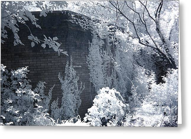 Dreamy Infrared Photo Art Greeting Cards - Surreal Dreamy Garden Infrared Fantasy Landscape Greeting Card by Kathy Fornal