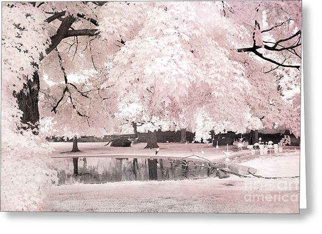 Surreal Infrared Photos By Kathy Fornal. Infrared Greeting Cards - Surreal Dreamy Infrared Pink White Flamingo Park - Pink Infrared Fantasy Nature Greeting Card by Kathy Fornal