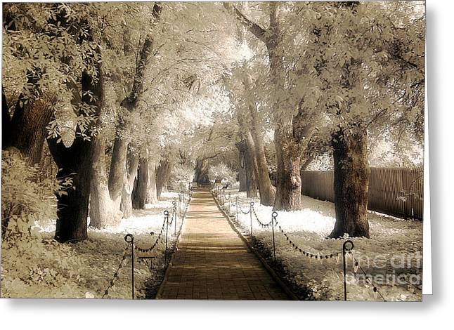 Surreal Dreamy Nature Photos Greeting Cards - Surreal Dreamy Infrared Sepia - Hopeland Gardens Park South Carolina Pathway Nature Landscape  Greeting Card by Kathy Fornal