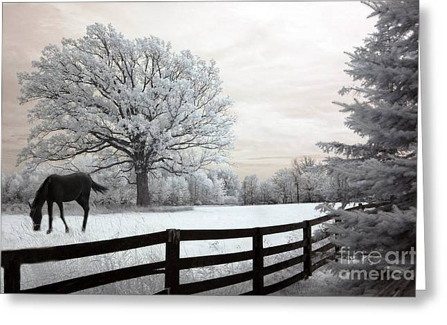 Horses Art Print Greeting Cards - Surreal Dreamy Infrared Trees - Fantasy Infrared Horse Nature Landscape With Fence Post Greeting Card by Kathy Fornal