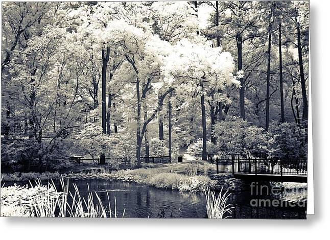 Surreal Infrared Dreamy Landscape Greeting Cards - Surreal Dreamy Infrared Trees Nature Landscape Greeting Card by Kathy Fornal