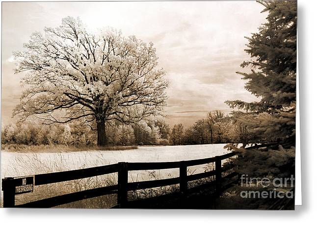 Dreamy Infrared Photo Art Greeting Cards - Surreal Dreamy Infrared Trees Nature Sepia Ethereal Landscape With Fence Greeting Card by Kathy Fornal
