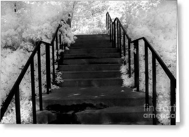 Surreal Fantasy Trees Landscape Greeting Cards - Surreal Fantasy Black and White Stairs Nature  Greeting Card by Kathy Fornal