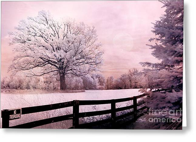 Dreamy Infrared Photo Art Greeting Cards - Surreal Fantasy Dreamy Pink Infrared Trees and Nature Landscape  Greeting Card by Kathy Fornal