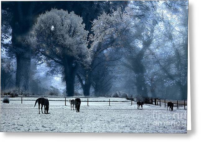 Pasture Framed Prints Greeting Cards - Surreal Fantasy Fairytale Infrared Nature Horses Blue Landscape Greeting Card by Kathy Fornal
