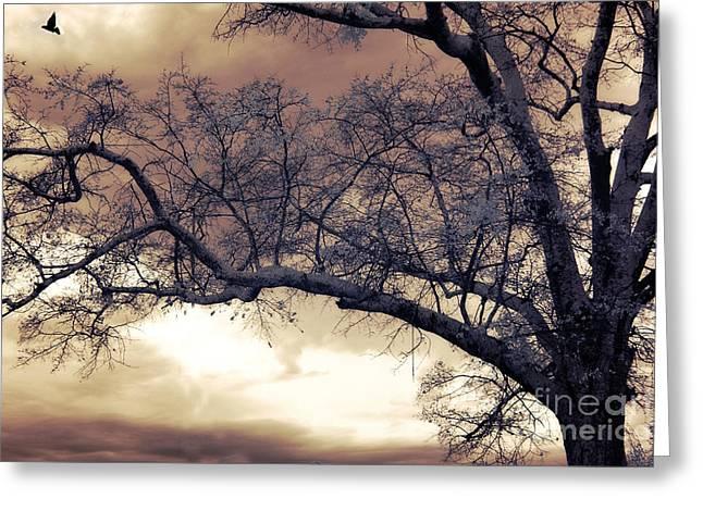 Surreal Fantasy Gothic South Carolina Tree Bird Greeting Card by Kathy Fornal