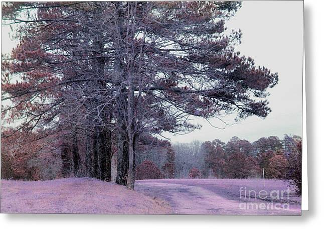 Photos Of Autumn Greeting Cards - Surreal Fantasy Nature South Carolina Tree Landscape Greeting Card by Kathy Fornal