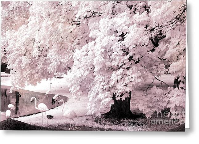Dreamy Infrared Greeting Cards - Surreal Fantasy Pink Flamingo Infrared Park Greeting Card by Kathy Fornal