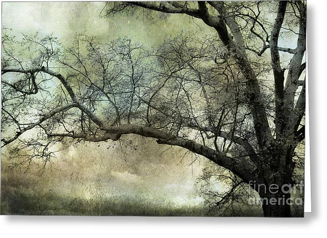 Surreal Fantasy Trees Landscape Greeting Cards - Surreal Gothic Dreamy Trees Nature Landscape Greeting Card by Kathy Fornal