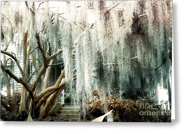 Surreal Photography Greeting Cards - Surreal Gothic Savannah House Spanish Moss Hanging Trees - Savannah Mint Green Moss Trees Greeting Card by Kathy Fornal