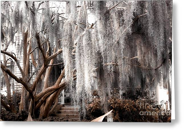 Surreal Photography Greeting Cards - Surreal Gothic Savannah House Spanish Moss Hanging Trees - Savannah Sepia Brown Moss Trees Greeting Card by Kathy Fornal