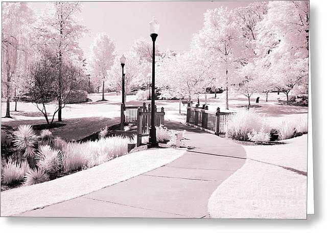 Dreamy Infrared Photo Art Greeting Cards - Surreal Infrared Dreamy Pink and White Park Tree Nature Path Landscape Greeting Card by Kathy Fornal