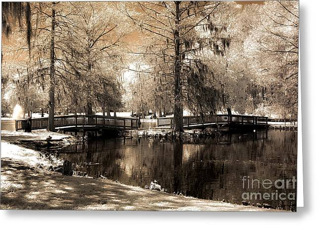 Surreal Infrared Dreamy Landscape Greeting Cards - Surreal Infrared Sepia Bridge Nature Landscape - Edisto Gardens Orangeburg South Carolina Greeting Card by Kathy Fornal