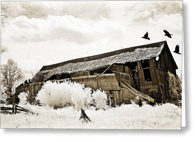 Michigan Farmhouse Greeting Cards - Surreal Infrared Sepia Vintage Crumbling Barn With Flying Ravens - The Passage of Time Greeting Card by Kathy Fornal