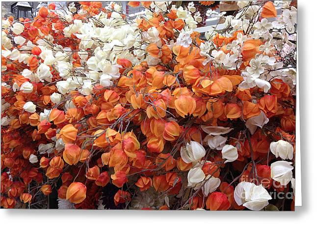 Autumn Flowers Greeting Cards - Surreal Orange and White Fall Leaves Branches and  Flowers - Colors of Autumn Fall Leaves  Greeting Card by Kathy Fornal