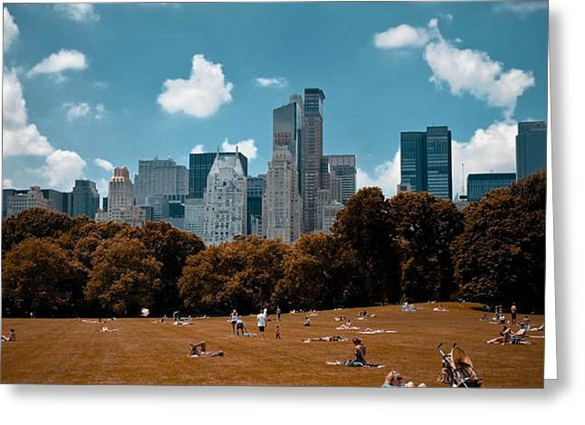 Surreal Summer Day in Central Park Greeting Card by Amy Cicconi
