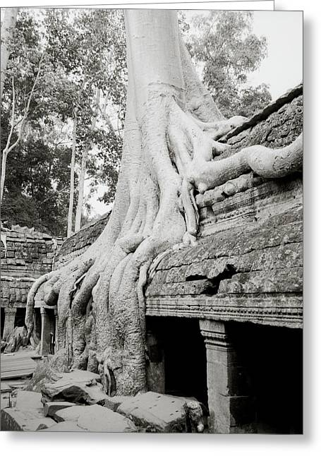 Temple Of Ta Prohm Greeting Cards - Surreal Ta Prohm  Greeting Card by Shaun Higson
