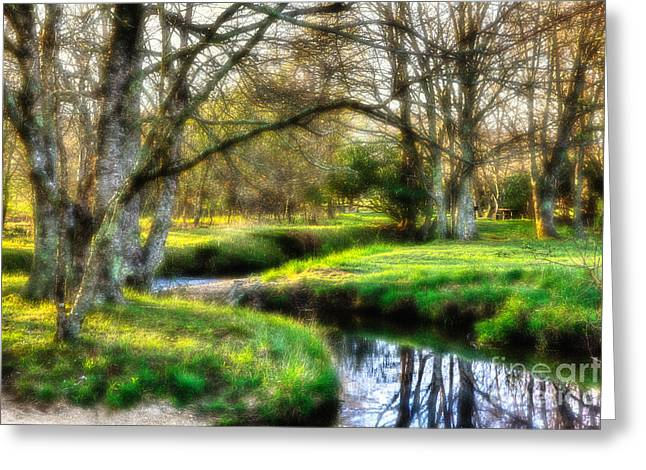 Fine Photographer Digital Greeting Cards - Surreal Winter Creek - Blue Ridge Parkway I Greeting Card by Dan Carmichael