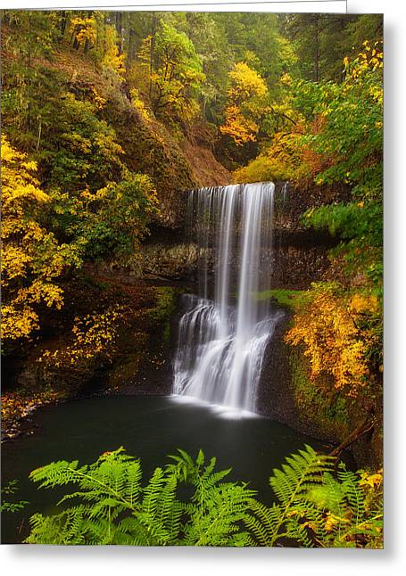 Waterfall Greeting Cards - Surrounded By Fall Greeting Card by Darren  White