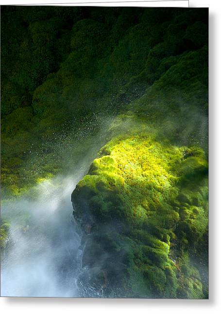 Smartphone Greeting Cards - Surrounded by Mist   Vertical Greeting Card by Mary Lee Dereske