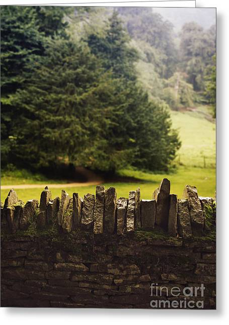 Stone Fence Greeting Cards - Surrounding the Pasture Greeting Card by Margie Hurwich