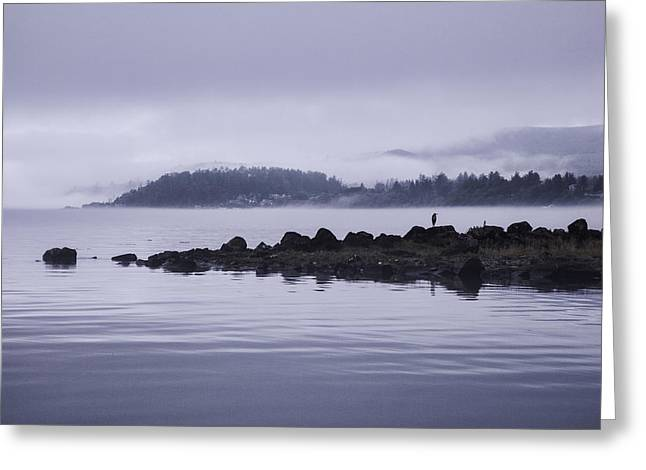 Surveying Greeting Cards - Surveying the Fog Greeting Card by Monte Arnold