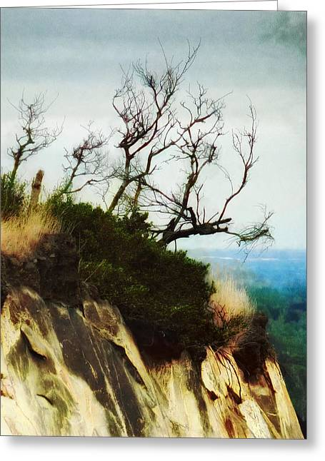 Topple Greeting Cards - Surviving on the Cliff Top  Greeting Card by Steve Taylor