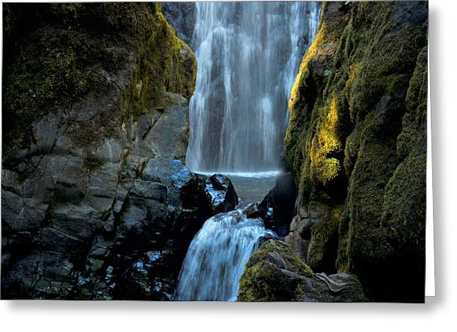 Moss Green Greeting Cards - Susan Creek Falls Series 12 Greeting Card by Teri Schuster