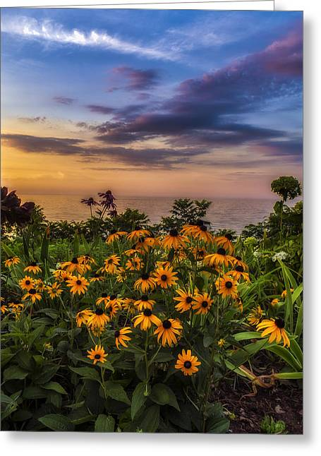 Susan's Sunset Greeting Card by Mark Papke