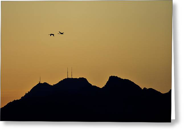 Fine Art Photography Pyrography Greeting Cards - Sutter Butte Fly By Greeting Card by Donni Mac
