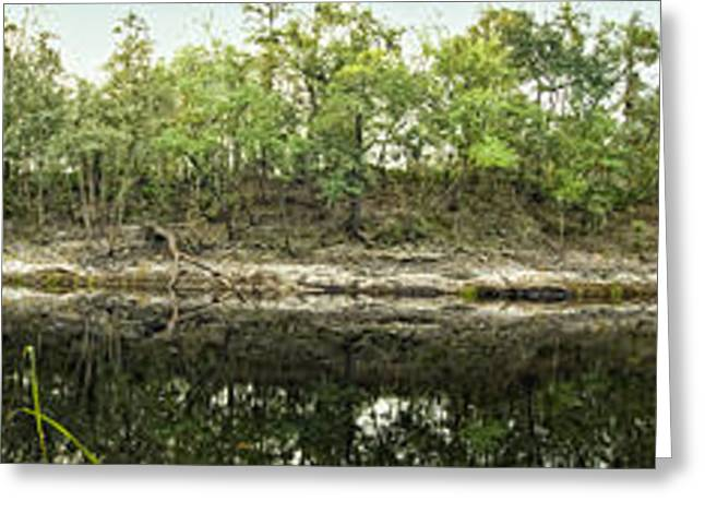 Beautiful Creek Greeting Cards - Suwannee River - Hamilton County Greeting Card by Rich Leighton