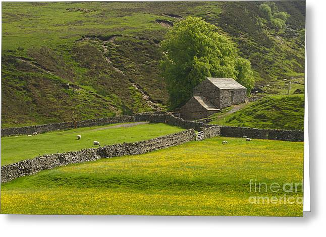 Stone Barn Greeting Cards - Swaledale Landscape Greeting Card by Louise Heusinkveld
