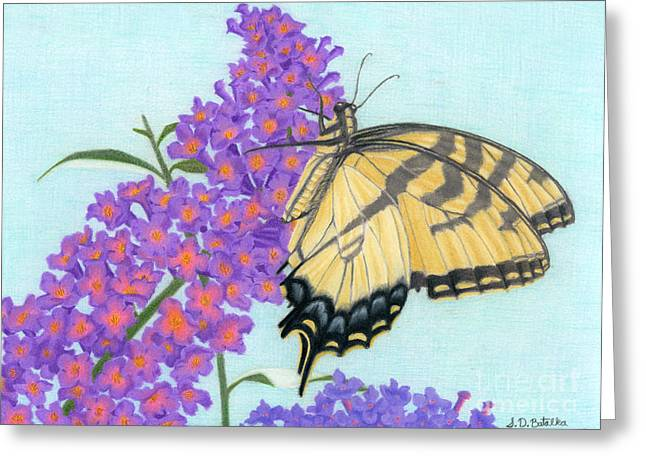 Hand Drawn Greeting Cards - Swallowtail Butterfly And Butterfly Bush Greeting Card by Sarah Batalka