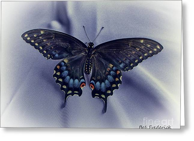 Swallow Tail Greeting Cards - Swallowtail Crashes Bar-B-Q Greeting Card by Robert Frederick