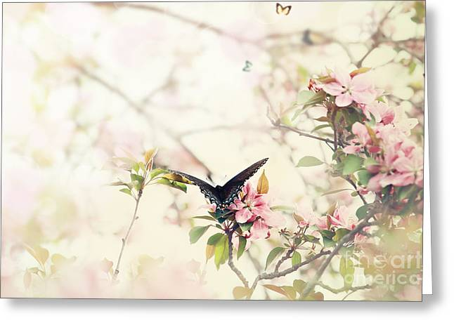 Amen Greeting Cards - Swallowtail in Spring Greeting Card by Stephanie Frey