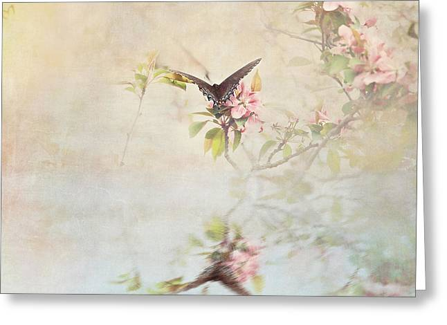 Spicebush Swallowtail Greeting Cards - Swallowtail Over Water Greeting Card by Stephanie Frey