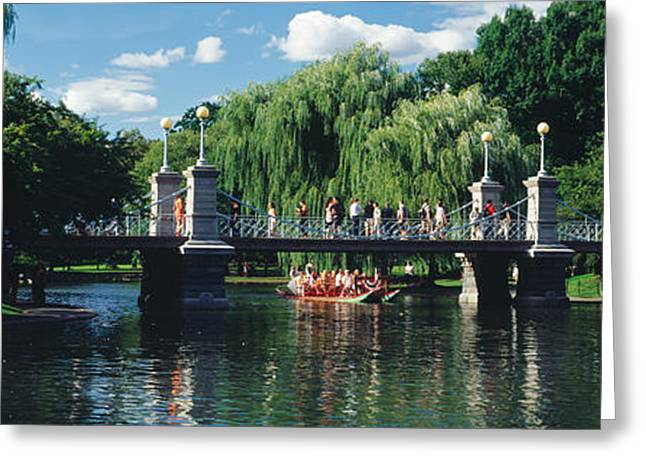 Footbridge Greeting Cards - Swan Boat In The Pond At Boston Public Greeting Card by Panoramic Images