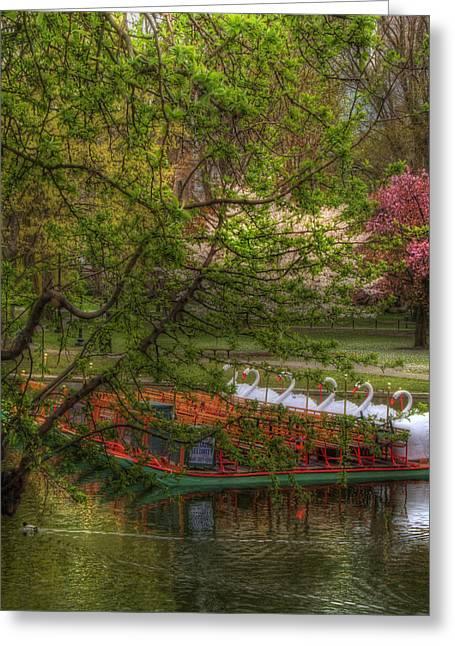 Spring Scenes Photographs Greeting Cards - Swan Boats in Boston Public Garden Greeting Card by Joann Vitali