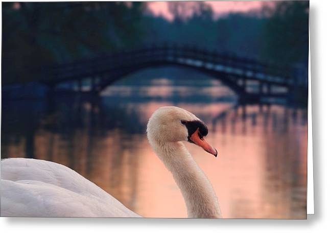 Pen Greeting Cards - Swan Bridge Greeting Card by Henry Kowalski