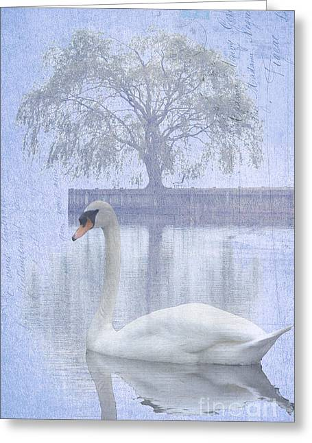 Waterscape Mixed Media Greeting Cards - Swan Lake by a Tree Greeting Card by Adspice Studios