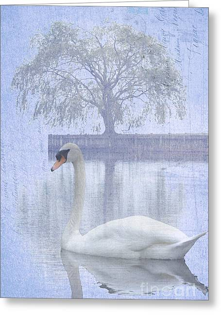 Waterscape Mixed Media Greeting Cards - Swan Lake by a Tree Greeting Card by ArtyZen Studios - ArtyZen Home