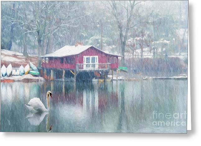 Winter Digital Photo Scene Greeting Cards - Swan Lake Greeting Card by Darren Fisher