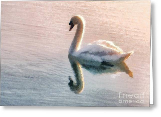 Pastel Pink Greeting Cards - Swan on lake Greeting Card by Pixel  Chimp
