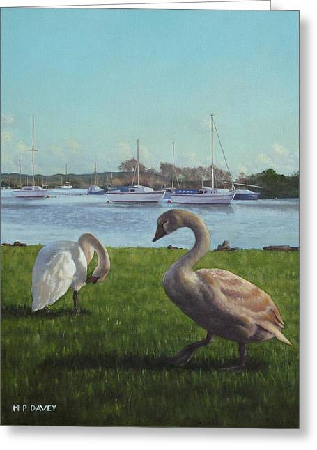 Boats In Water Paintings Greeting Cards - swans at Christchurch harbour Greeting Card by Martin Davey
